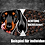 Thumbnail: DOGSifiziert Mund/Nasen-Maske Spezial