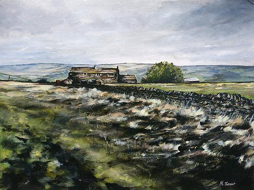 Acre Head Farm