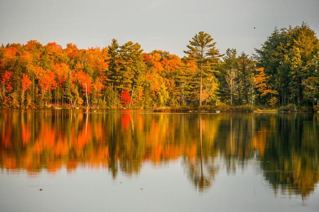 Deer Lake Fall
