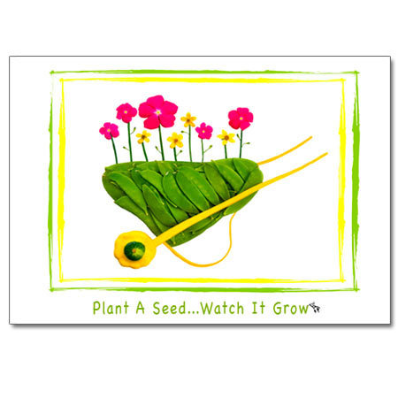 Plant A Seed (wheelbarrow)