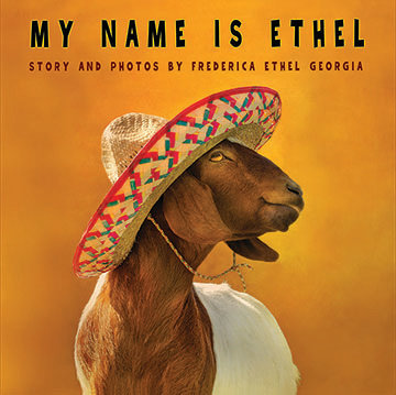 My Name is Ethel (Hardback Book)