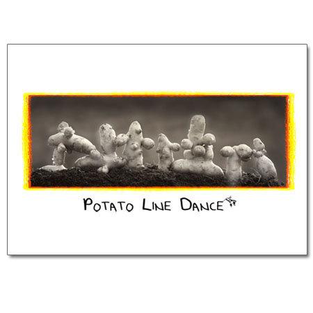 Potato Line Dance