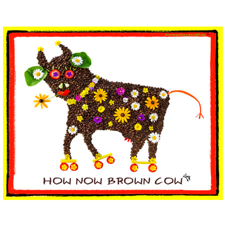How Now Brown Cow  (T shirt)