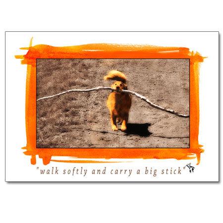 Walk Softly (greeting card)