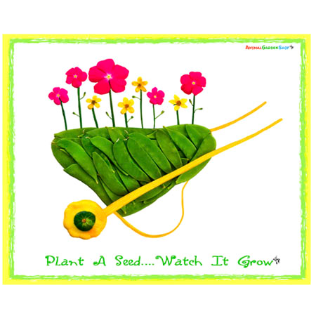 Plant a Seed - Wheelbarrow