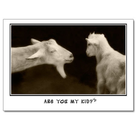 Are You My Kid?