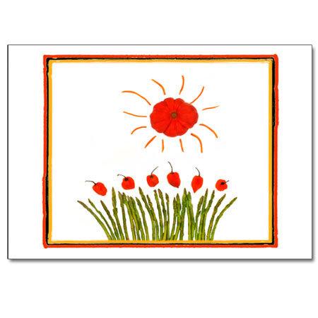 'Mater Sun