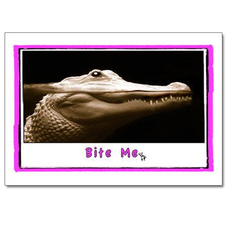 Bite Me (gator)