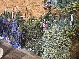 Dried Flower Pop-Up Shop