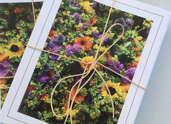 Set of 8 Roots Notecards