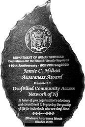 CBVI Award 10.2020.jpg