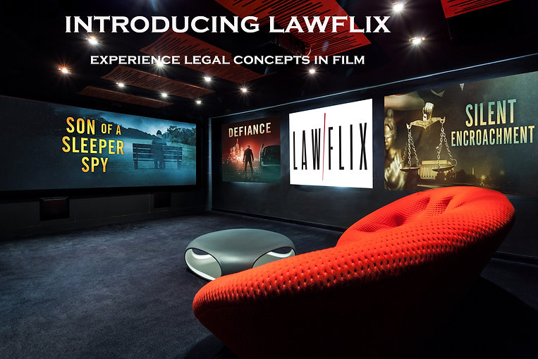 lawflix theater 8 with text.jpg