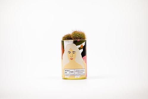 Cacti & Succulent