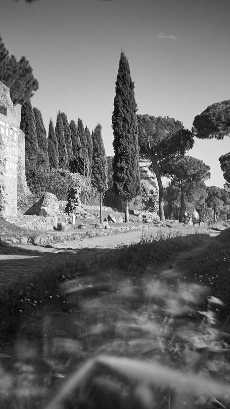 Roma 53.jpg