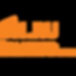BNRU_BN_logo (1).png