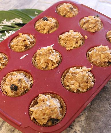 Baking Blueberry Crunch
