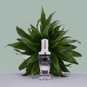 Parfum 04