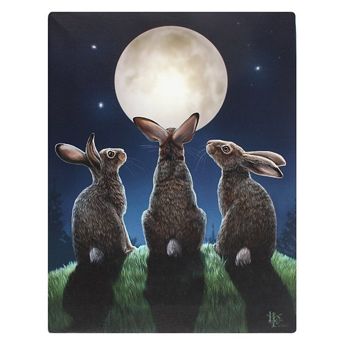 19X25CM MOON SHADOWS CANVAS PLAQUE BY LISA PARKER