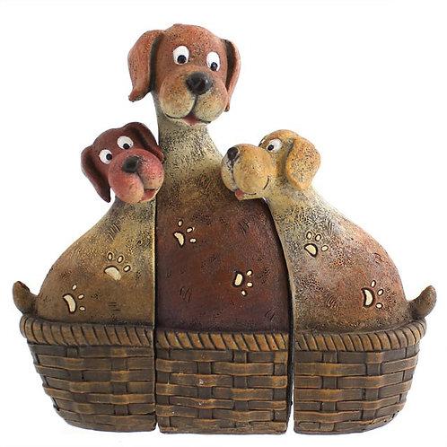 Dog Family In Basket