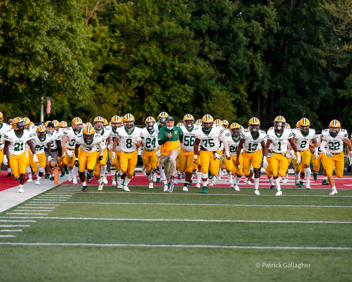 team taking the field.jpg