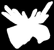 BD-Logo.Moose_edited.png