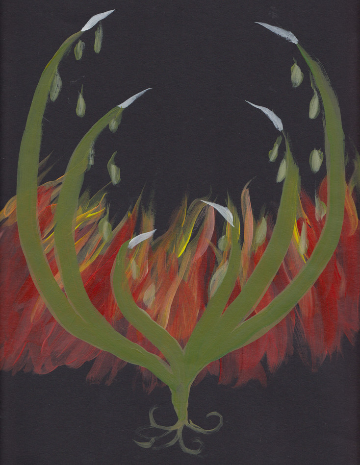 Plant-hand-spiral series 8