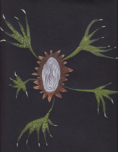 Plant-hand-spiral series 11
