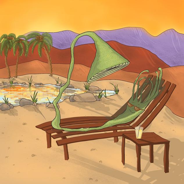 Desert Sunbathing