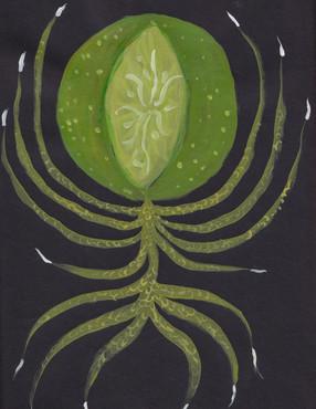 Plant-hand-spiral series 3