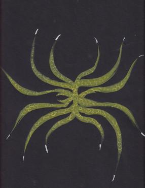 Plant-hand-spiral series 20