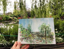 Monet's Garden in Giverny 莫乃故居的花園