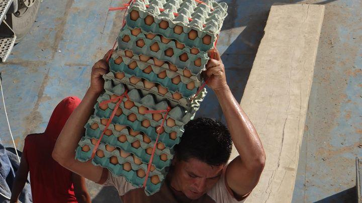 und ab gehts in Richtung Amazonas auf einem Schiff mit rund 500000 Eiern