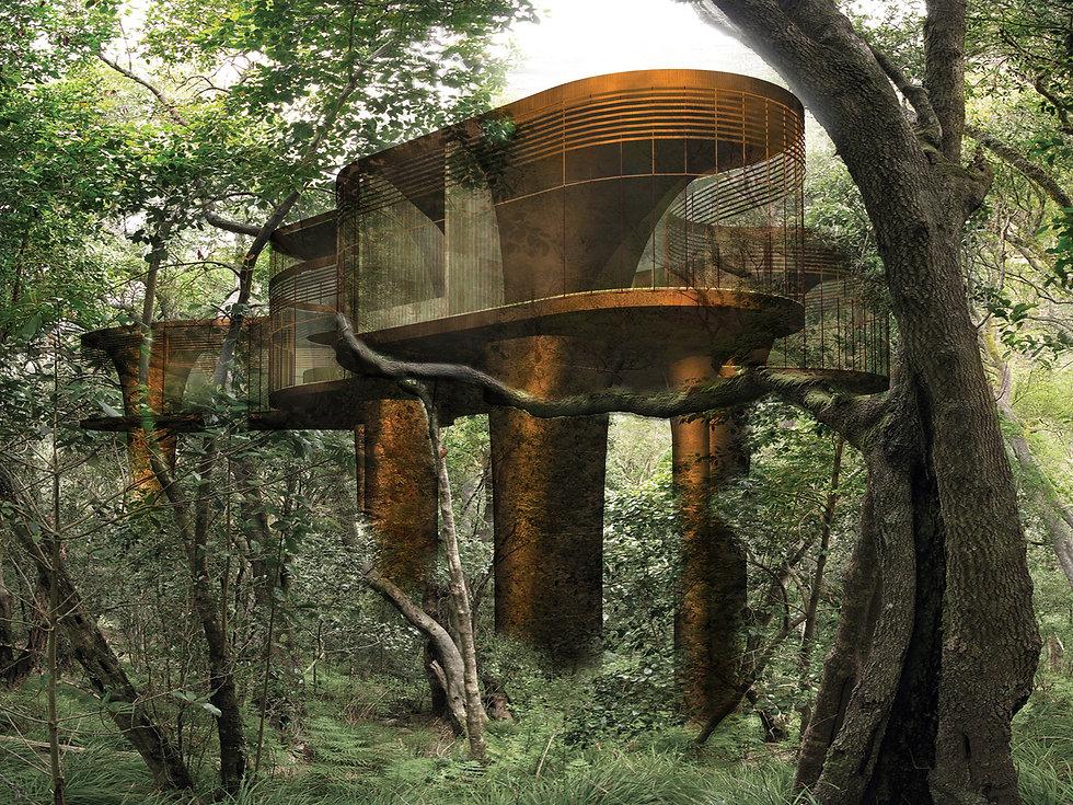 Steel-Tree-House-sydney-architect.jpg