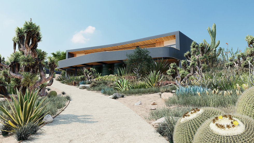 Eco-Home-Desert-Architect-Sydney.jpg