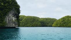 House Aguon Palau