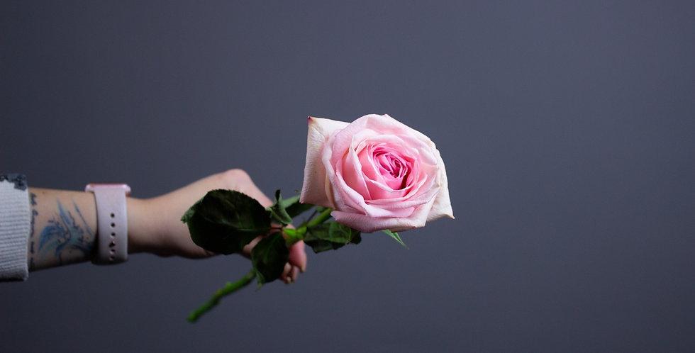 Пионовидная роза Пинк Охара