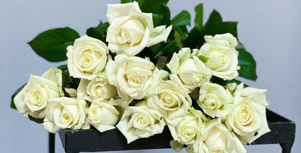 15 белых роз 50см