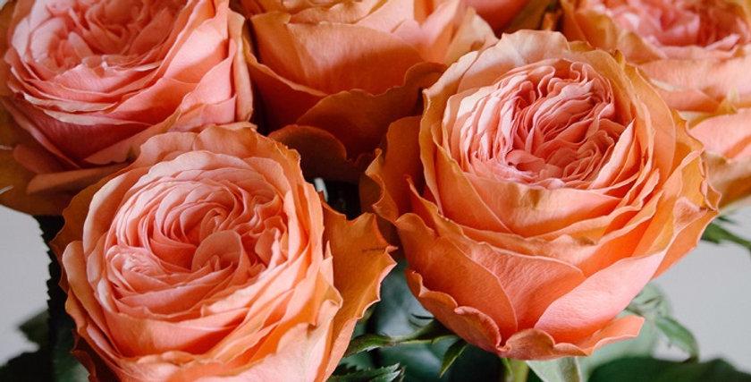Роза Кахала 60см