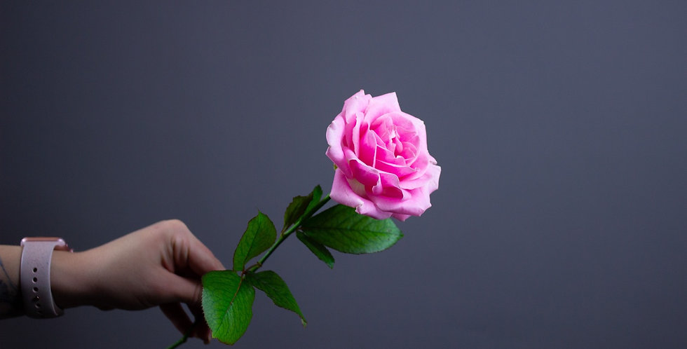 Роза розовая 50см