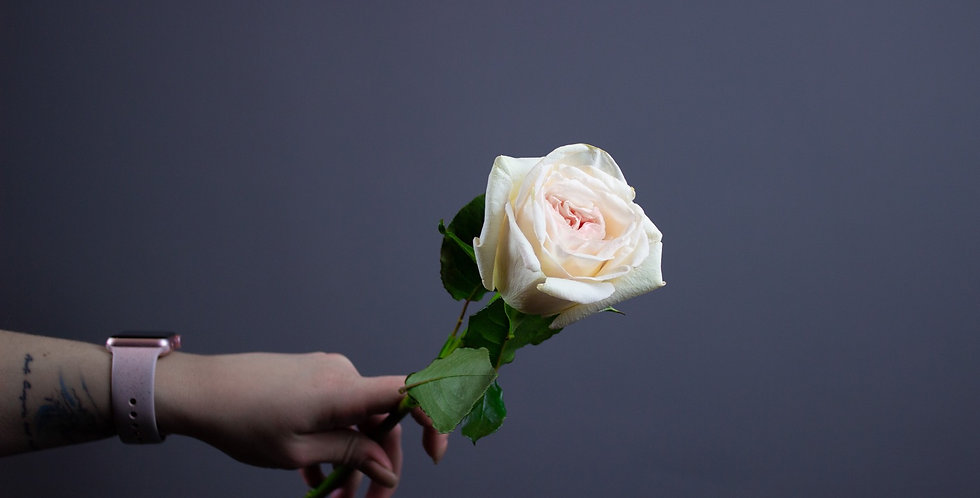 Пионовидная роза Вайт Охара
