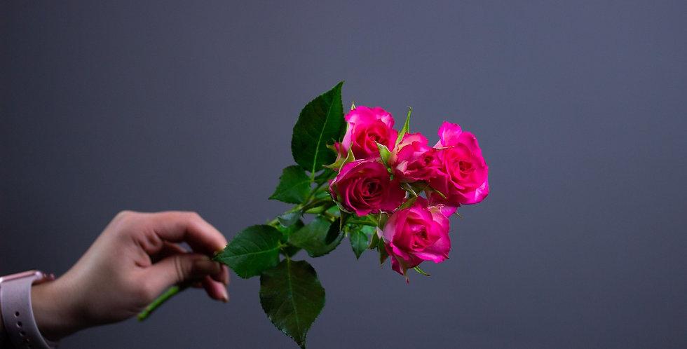 Кустовая Кенийская Роза Цикламен 40см