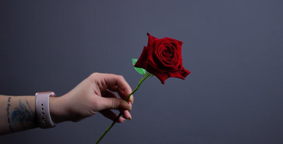 Роза красная 50см