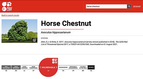 Dagley Lane Shalford Horse Chestnut.png