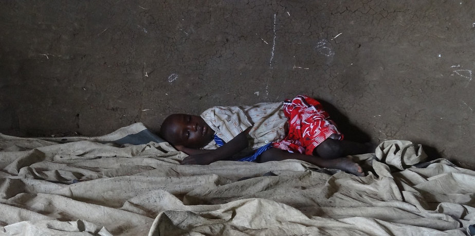 Seeds for Development - Malaria in northern Uganda