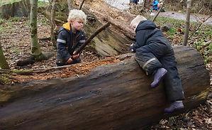 Danish forest kindergarten dangerous play