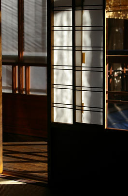 Light, Shadow, Accidents of nature in Kyoto ryokan