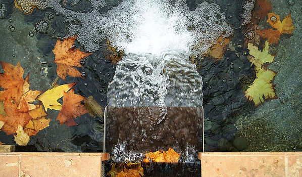 Landscape and architecture water feature with autumn leaves
