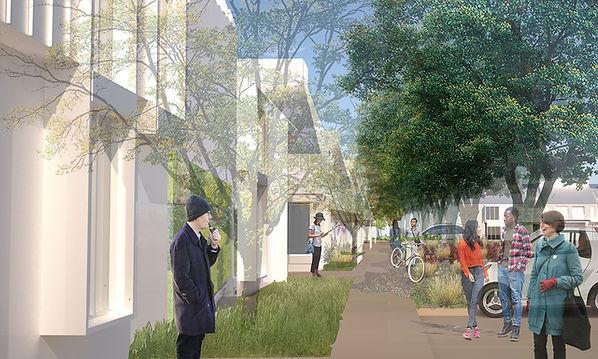 single family house neighborhood transformed with horizontal density