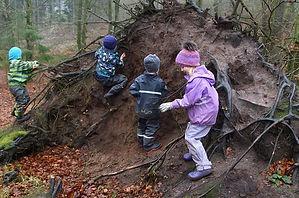 Danish forest kindergarten wild play