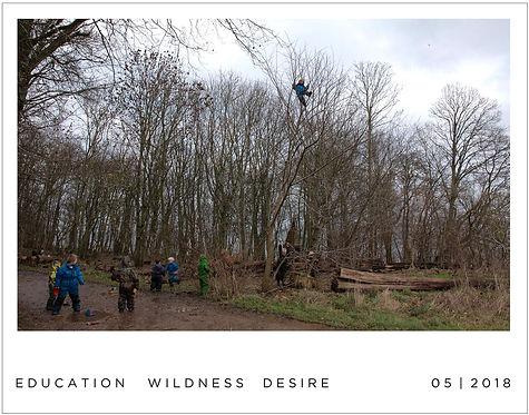 Education - wildness, desire, pleasure, beauty
